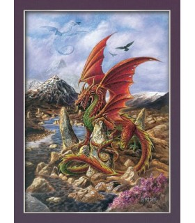 Fire Dragon Poster (30 x 40,5 centimetri)