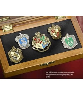 Pins scuole Hogwarts, Harry Potter