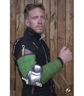 La protezione completa di braccio di Paladino