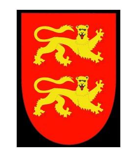 Bandiera medievale Ricardo Corazón de León