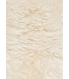 La pelle dell'agnello bianco