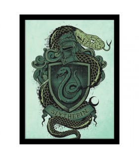 Timbro Stemma di Slytherin, Harry Potter